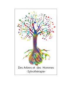 logo-avec-cadre-des-arbres-et-des-hommes-sylvotherapie-1459
